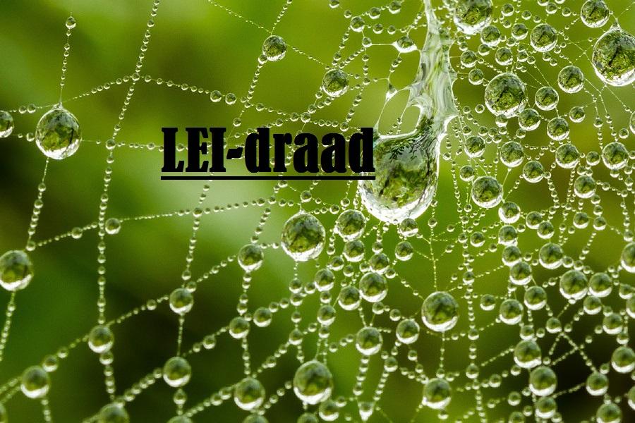 Lei-draad